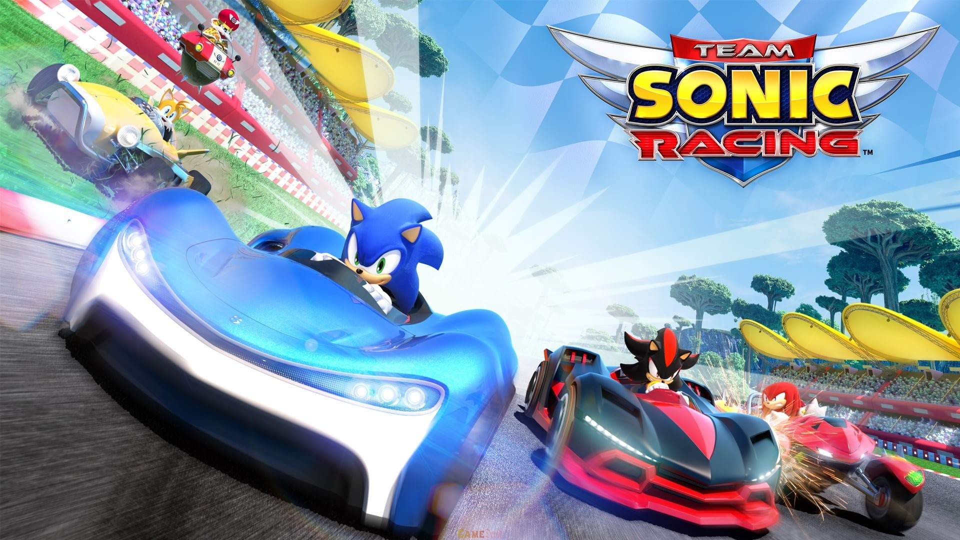 Team Sonic Racing PS Complete Game Free Download