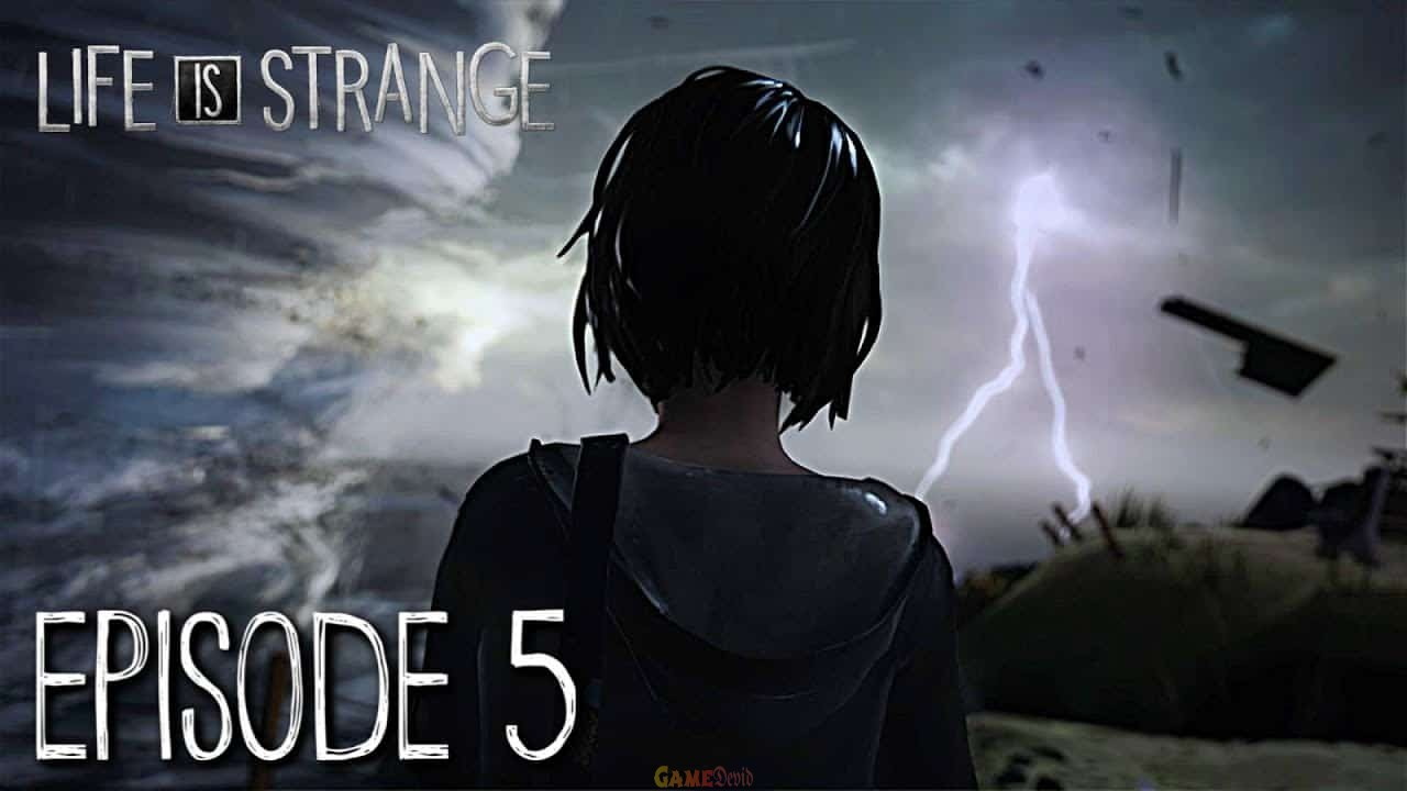 Life is strange 2. Episode 5 Official PC Game Version Free Download